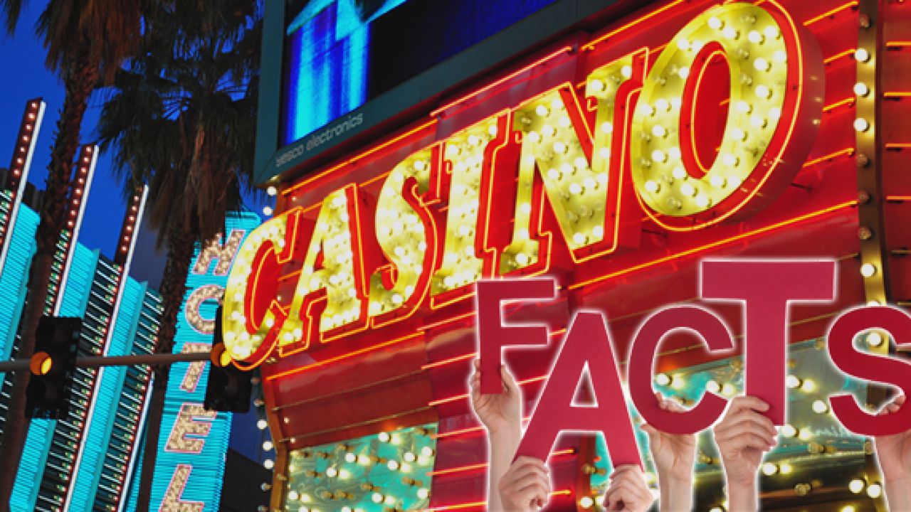 Who Owns the Most Casinos in Usa